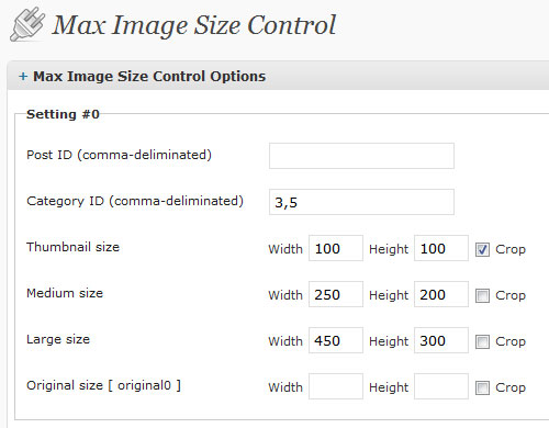 Max Image Size Control 設定画面