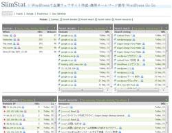 WP-SlimStat-Ex アクセス解析画面